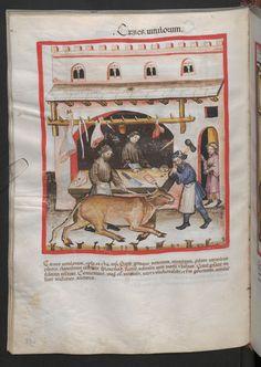 Folio 73v (page 150). Tacuinum sanitatis, Codex Vindobonensis, series nova 2644. Northern Italy, probably Verona, 1380-1399.