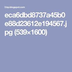eca6dbd8737a45b0e88d23612e194567.jpg (539×1600)