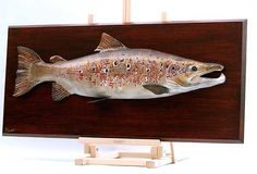 Carved in Basswood and Tupelo Red Oak backboard inches long 12 lbs X plaque . Yves Laurent, Trophy Plaques, Saltwater Flies, Atlantic Salmon, Learn To Fly, Red Oak, Taxidermy, Antlers, Fly Fishing