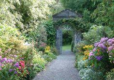 Jardines de irlanda -