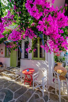 Simple in its morning beauty, Kythnos island. Bougainvillea, Mykonos, Santorini, Beautiful World, Beautiful Places, Estilo Interior, Greek Culture, Greek Isles, Greece Islands