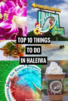 Top 10 Things To Do In Haleiwa, Hawaii - Whether you're passing through or making a day of it, here are the ten things you can't miss in Haleiwa!