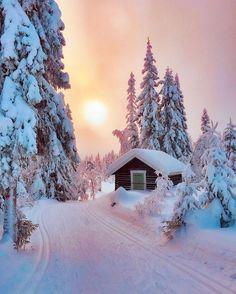 Winter Pictures by Jessie Winter Szenen, Winter Magic, Norway Winter, Winter Pictures, Nature Pictures, Winter Drawings, Winter Illustration, Snow Scenes, Winter Beauty