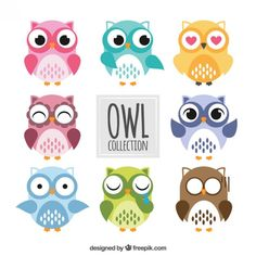 Colored owls collection Premium Vector