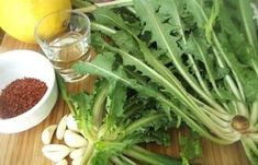 Radika Otu, Kullanimi ve Faydalari - ot.gen.tr Seaweed Salad, Celery, Green Beans, Gluten, Herbs, Vegetables, Health, Ethnic Recipes, Food