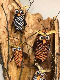 Kreatywny Wychowawca Zoo Animals For Kids, Diy And Crafts, Crafts For Kids, Pine Cone Crafts, Diy Camping, Autumn Art, Owl Art, Art For Kids, Insects