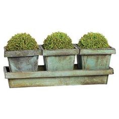 "Brighten your kitchen windowsill or entryway console with this tin planter set, featuring a distressed green finish.  Product: Set of 3 planters and 1 trayConstruction Material: TinColor: Distressed greenDimensions: 5"" H x 15"" W x 5"" D (overall)Note: Topiaries not included"
