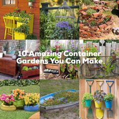 10 Amazing Container Gardens You Can Make