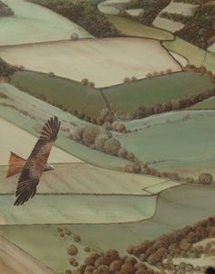Red kite over Yorkshire Wolds. Original painting by William Simon Wallace.