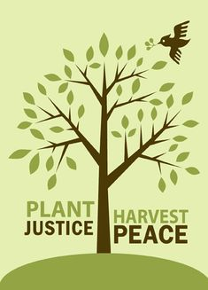 Plant justice, harvest peace.