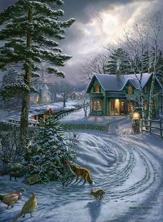 James Meger. Winter home with woods and wildlife