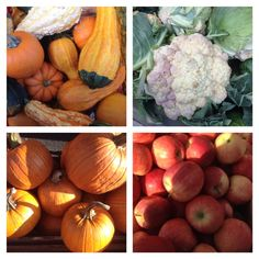 #farmersmarketnyc - #StatenIsland Mall Greenmarket has #gourds #pumpkins #cauliflower and #apples  https://www.facebook.com/photo.php?fbid=746732192010424&set=a.247614488588866.82872.147847605232222&type=1&theater