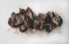 leaves - softblur photography Photography Portfolio, Leaves, Wedding, Valentines Day Weddings, Weddings, Marriage, Chartreuse Wedding