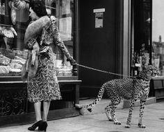 TROWBRIDGE - Black and White Archive