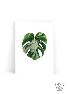 Monstera print palm leaf Monstera leaf print by PrintsMiuusStudio