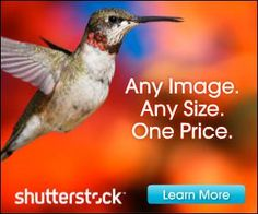 Stock Photography News and Info