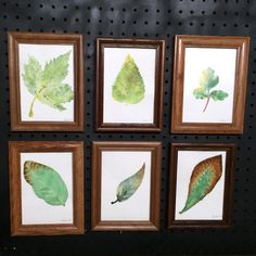 Green Autumn Leaf Watercolor Set