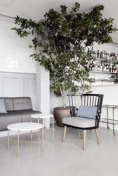 Est-Magazine-Verandah-Restaurant-Copenhagen-gamfratesi-04