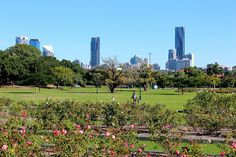 Brisbane skyline from New Farm Park Brisbane Cbd, Brisbane Queensland, Brisbane Australia, Australia Day, Brisbane Gold Coast, New Farm, Local Parks, Business For Kids, Landscape Design