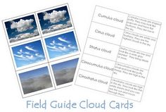 Little Sprouts: Cloud Cards - Printable