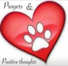 Image result for happy valentines paw print