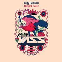 $$$ VASS BASS FO' YO' ASS #WHATDIRT $$$ Birdy Nam Nam - Defiant Order (Vass Remix) by Vass on SoundCloud