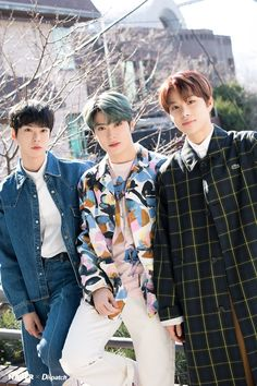 NCT handsome trio guys flaunt dashing visuals Who: Doyoung, Jaehyun, Jungwoo (NCT Ntc Dream, Nct Group, Jung Jaehyun, Jung Woo, Kim Jung, Taeyong, Hd Photos, Belle Photo, Nct 127