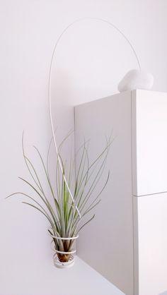 Air Plant Planter by CODIstudio.