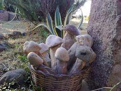 Cestino con funghi.