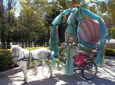 Ponies for parties, carriage rides, miniature horse rides Southern California                                                                                                                                                      More Mini Horse Cart, Miniature Donkey, Miniature Horses, Horse Wall Decals, Mini Pony, Cinderella Carriage, Horse Gear, Horse Riding Gear, Majestic Horse
