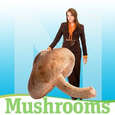 Online Library | Articles | Mushrooms Enhance Immune Function and Protect Against Cancer | DrFuhrman.com