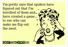 Im pretty sure that spiders have figured out | Funny Dirty Adult Jokes, Memes & Pictures |