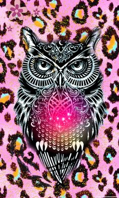 Owl Cute Girly Create By Rose Hispter Wallies Me