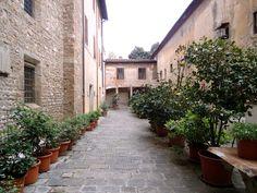 Da série Europa Firenze pelas lentes de Thoni Litsz ensaio 2