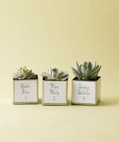 10 Creative Wedding Favors: Simple Succulents There's nothing like an eco-friendly favor that will last long after the big day. Attach your guest's name and table number to each vessel and they'll double as escort cards. Baby Shower Favours For Guests, Wedding Favors For Guests, Our Wedding, Party Wedding, Trendy Wedding, Wedding Bells, Wedding Gifts, Dream Wedding, Creative Wedding Favors