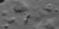 Life? Did NASA Capture An #Alien And Its Shadow On The Moon? #Universe