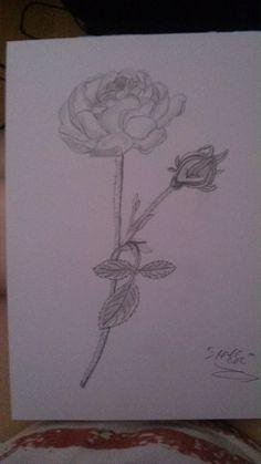 rosen sind schön ^^