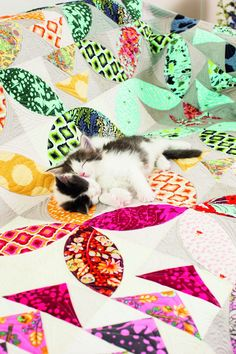 """Tula Pink """"Bird Seed"""" quilt free downloadable pattern Get creative with BERNINA: Sew it yourself with projects and sewing instructions. - BERNINA"""