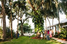 A backyard wedding ceremony and reception under tall trees at a Florida wedding venue.