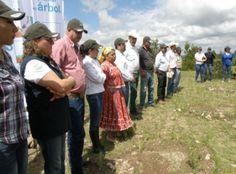 "SEDUE apoya programa ""Tarahumara sustentable"""