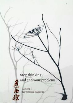 Stop thinking and end your problems. Tao Te Ching chapter image from Tao book cover Buddhist Wisdom, Buddhist Quotes, Spiritual Wisdom, Lao Tzu Quotes, Zen Quotes, Wisdom Quotes, Haiku, Zen Proverbs, Perspective