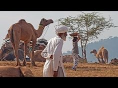 India Rajasthan travel - YouTube