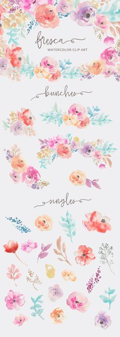 Meet Fresca, a pretty little watercolor floral clip art collection. Fresca features lovely floral bouquet bunches as well as tons of individual leaves, stems, flowers, and other elements so that you can create and make your own pretty watercolor masterpieces.