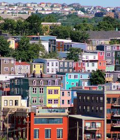 A close-up view of some of the colorful and steep streets of the old town area of St. (Signal Hill, NFLD, Canada ~ photo by SignalHillHiker) Newfoundland Canada, Newfoundland And Labrador, All About Canada, O Canada, Visit Canada, Alaska, Canadian Things, Atlantic Canada, Whale Watching