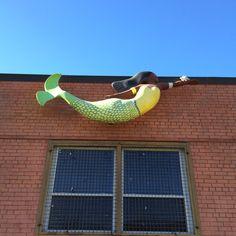 Yuma Yah at the YMCA #norfolkmermaid