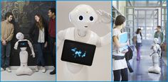 Aldebaran 旗下的机器人家族系列  Aldebaran