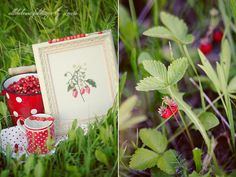 Acufactum  Gartenpoesie Wild Strawberries