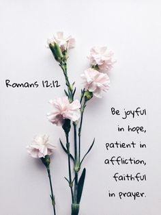 Be joyful in hope, patient in affliction, faithful in prayer. Romans 12:12 https://www.biblegateway.com/passage?search=Romans%2012:12&version=NIV