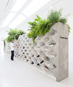 FLIP ZIEDSES DES PLANTES design studio - FILLING PIECES. tropical sneaker landscape. Metal cabinets combined with concrete and plants