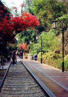 Railroad park in XiaMen, China